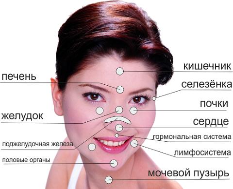 Карта прыщей на лице