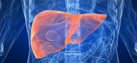 Токсический гепатит: симптомы и лечение, что это такое?