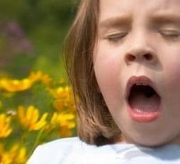 Аллергический кашель симптомы