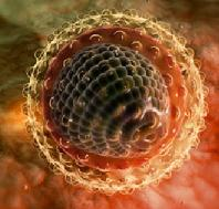 Гепатит с симптомы и лечение