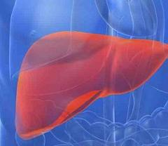 Хронический гепатит фото