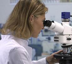 Лейкоциты в мазке повышены причины