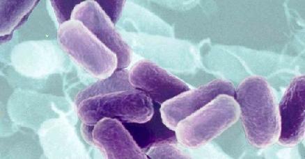 Микоплазма у мужчин лечение