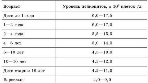 лейкоциты норма