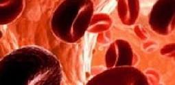 Гемоглобин: норма у женщин и мужчин по возрасту