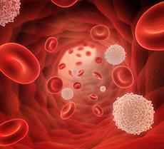 Повышенные лимфоциты