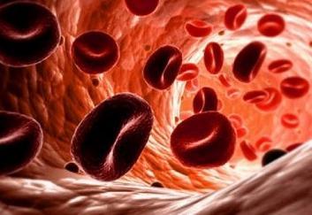 Почему эритроциты в крови повышены