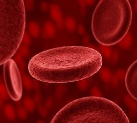 в крови эритроциты понижены