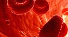эритроциты в крови повышены