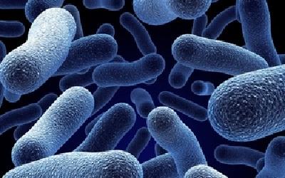 Бактериальный вагиноз: причины, лечение, симптомы