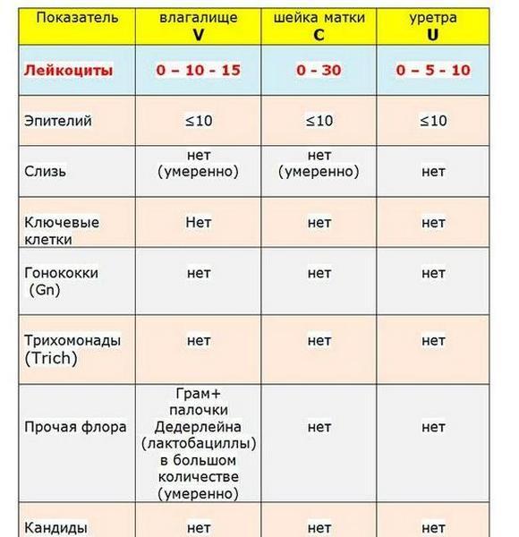 Анализы мазка на флору: расшифровка результатов, норма показателей в таблице
