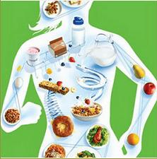 Нарушение обмена веществ. Симптомы у женщин, признаки, причины, лечение народными средствами, препараты, диета, массаж